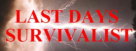 Last Days Survivalist - Index 2 - Archive